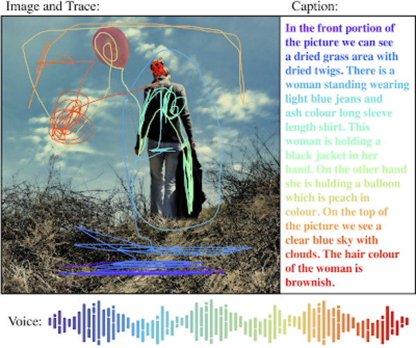 An example of a local narrative from Google's Open Images V6 dataset.