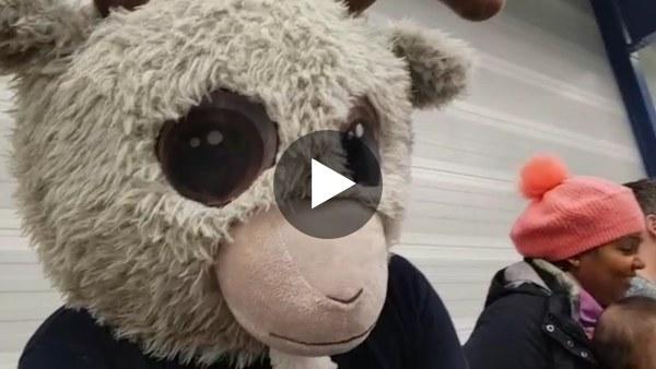 ROAC TV #11: De tijger tegen de bok (handbal special) (video)