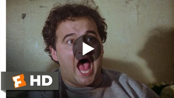 Toga! Toga! - Animal House (6/10) Movie CLIP (1978) HD