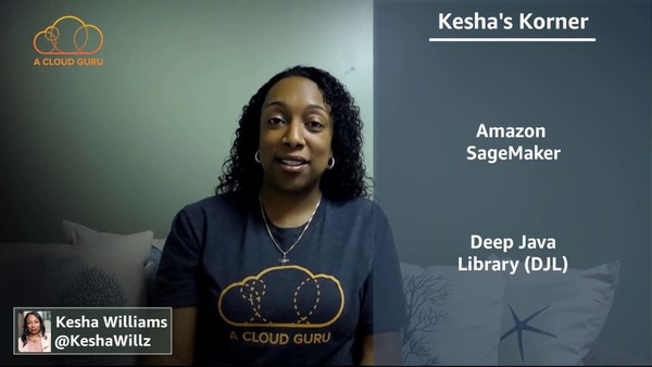 The Machine Learning Lifecycle by Kesha Williams
