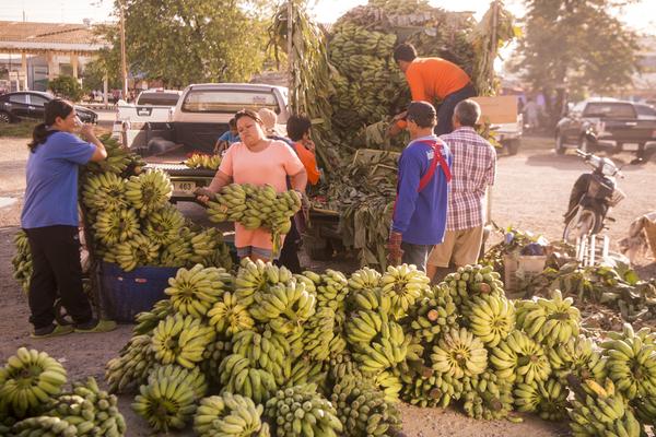 Bananen op de markt in Phimai.