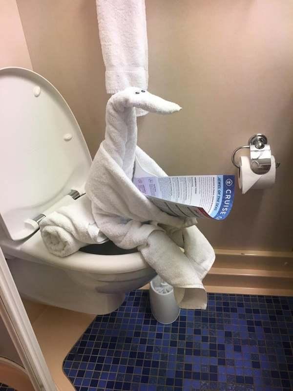 Towel animal left by the hotel staff - Credit: Reddit/u/OyeSimpson