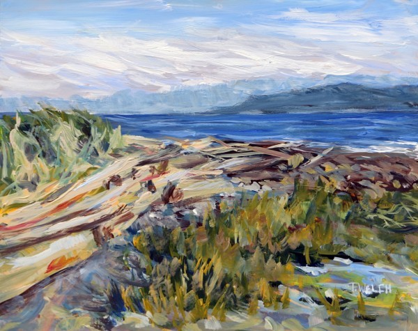 A Grassy Point Morning on Hornby Island by Terrill | Artwork Archive