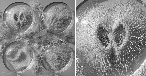 Outbreak: Hand Cut Paper Microbes and Pathogens
