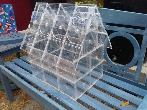 Craft time: Build your own greenhouse with old CD cases | Charleston County Public Library