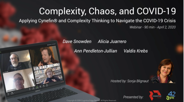 Go to https://cognitive-edge.com/videos/complexity-chaos-covid-19/