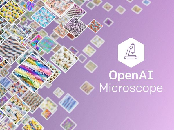 OpenAI Microscope
