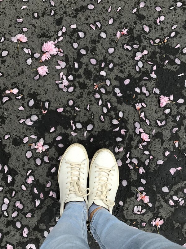 Standing in the middle of the pink petals
