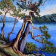 Featured Artists in the Terrill Welch Gallery, West Coast Landscape Paintings
