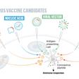 Rodzaje szczepionek i jak działają na przykładzie kandydatów szczepionek przeciw SARS-CoV-2