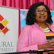 St Lucia Cultural Development Foundation takes steps to cushion the devastating blow of COVID-19