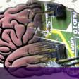 Is AI already conscious?