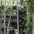 The Life and Fiery Death of the World's Biggest Treehouse - Atlas Obscura