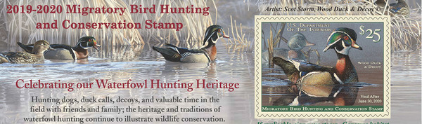 Change to Federal Duck Stamp Contest Celebrates the Conservation Achievements of Waterfowl Hunters