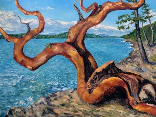 Arbutus Tree in Breaking Sun by Terrill Welch   Artwork Archive