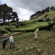 Urgente reinvención de la economía colombiana tras Covid