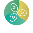 Impactview - All Dutch Impact Startups in One View - Impactview