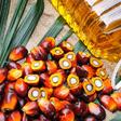 Le Cameroun importera 90000 tonnes d'huile de palme brute en 2020