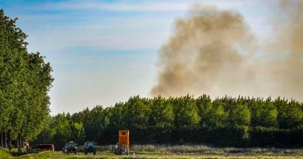 Grote bosbrand tussen A4 en HSL