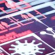 Coronavirus digital health passport to be supplied to 15 countries - Verdict