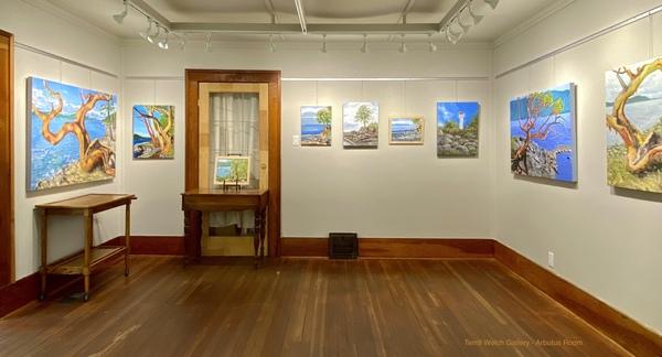 Terrill Welch Gallery Arbutus Room in Mayne Island, B.C.