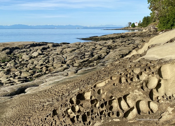 A gorgeous shoreline at low tide at the entrance of Active Pass.