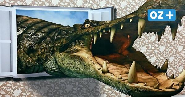 Vorsicht, Krokodil: So täuscht das neue Museum der Illusionen in Ückeritz die Sinne