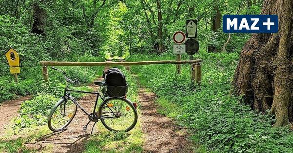 Radtour durch das Naturschutzgebiet Zarth