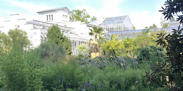 Botanischer Garten der Universität Leipzig. Foto: Susanne Reinhardt