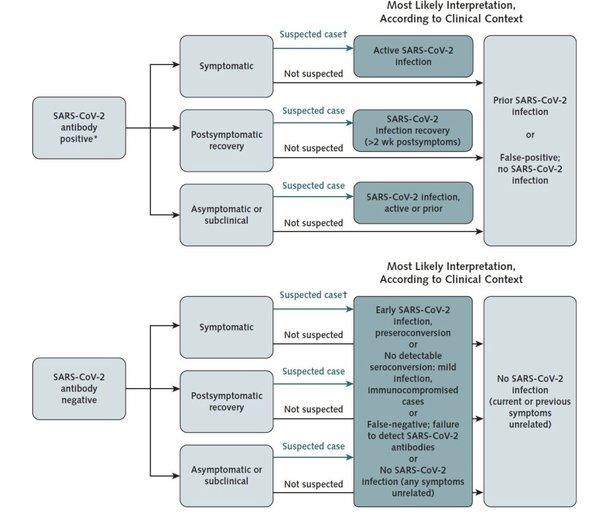 Bardzo fajne badanie na temat badań serologicznych (na przeciwciała)