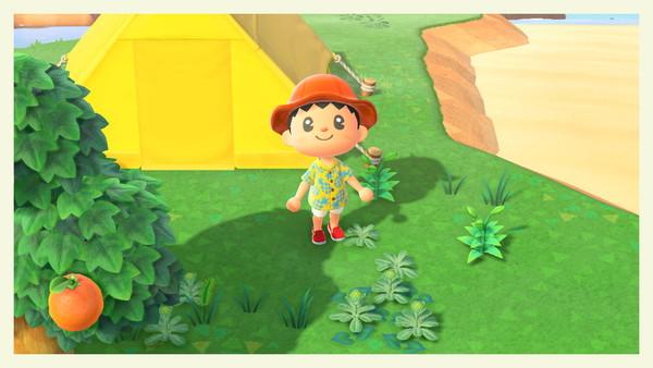Tu as l'habitude que je partage un selfie en début de lettre. Voici mon selfie dans le jeu Animal Crossing sur Nintendo Switch. Après des semaines d'hésitation j'ai fini par craquer....
