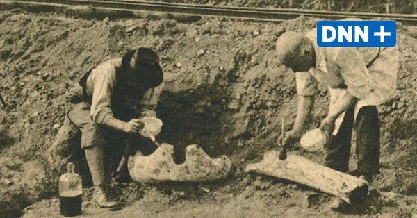 """Archäologische Grabungen in Dresden – Von Gräbern, Mammuts und """"Nickertzer"""""""