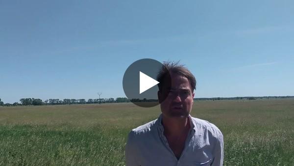 Im Video stellt Lars Sittig die Highlights der Tour durch die Landschaftswiesen vor.