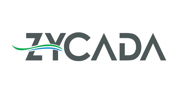 Zycada raises $19 million for AI that speeds up web content delivery