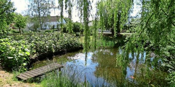 Im Unterdorf Paplitz ist der kleine Dorfteich eingezäunt. Foto: Gertraud Behrendt