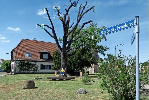 Ein Baum mit Bildern steht im Paplitzer Oberdorf. Foto: Gertraud Behrendt