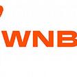 2020 WNBA season plan unveiled