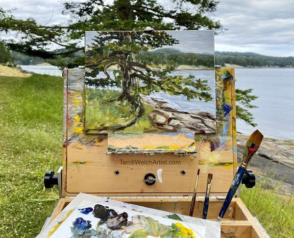 Landscape painter Terrill Welch capturing an only fir tree.