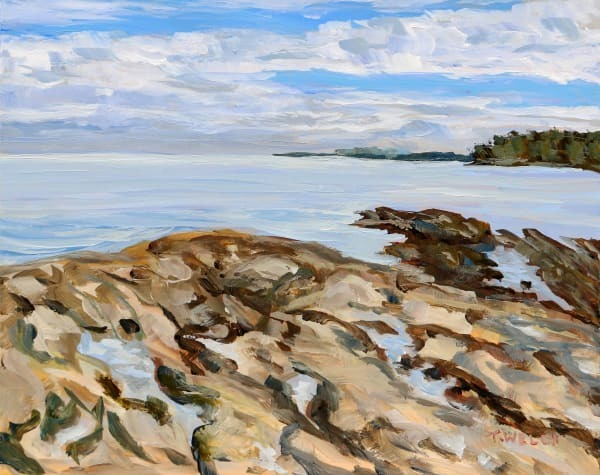 Staying with the Blues Reef Bay by Terrill Welch | Artwork Archive