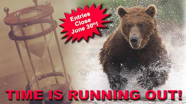 Kamchatka Brown Bear Sweepstakes