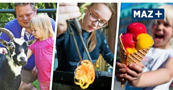Urlaub in Brandenburg: Das sind die MAZ-Ferientipps für den Sommer 2020