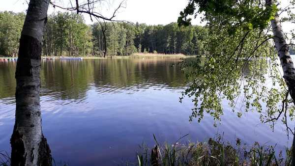 Versteckt im Wald liegt der Grabowsee. Foto: Helge Treichel