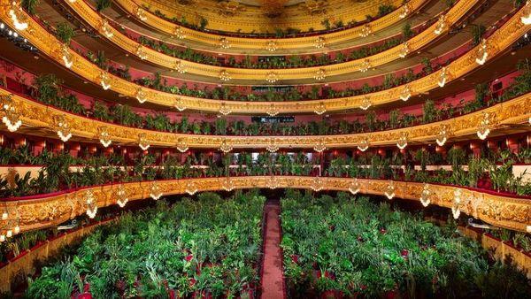 """Barcelone : """"Concert pour le Biocène"""""""