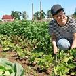 Bio-Gemüse aus dem Bauerngarten