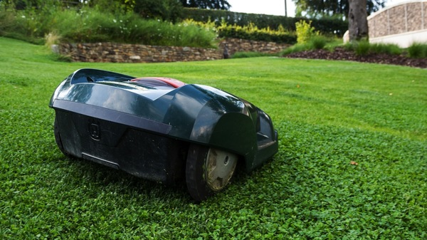 A Bernissart, les robots tondeuses ne pourront plus fonctionner pendant la nuit - Bernissart verbiedt nachtelijk maaien door robots