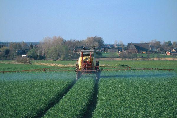 Qualité de l'air : des résidus de pesticides interdits depuis 22 ans, toujours présents - Deeltjes van verboden pesticides aangetroffen in de lucht