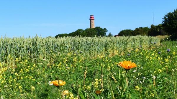 Wunderschöne ländliche Idylle (Foto: Corinna Schaak)
