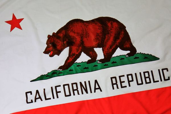 The bear on the California state flag lived in Golden Gate Park