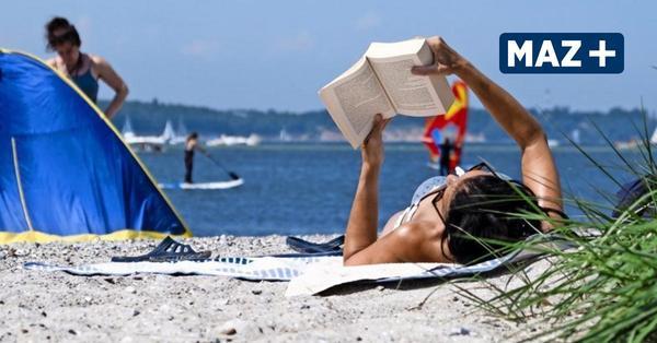 Die besten Bücher, Alben und Serien für den Sommerurlaub