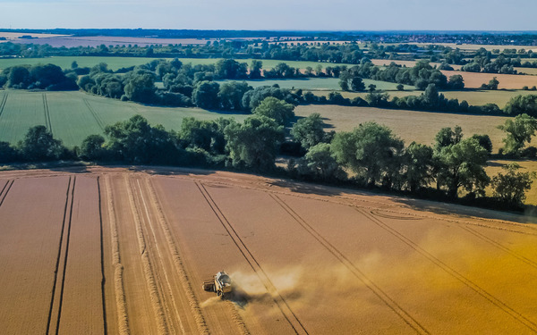 The UK's food strategy cannot be left to the market